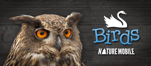 Birds Pro (Vogelführer)